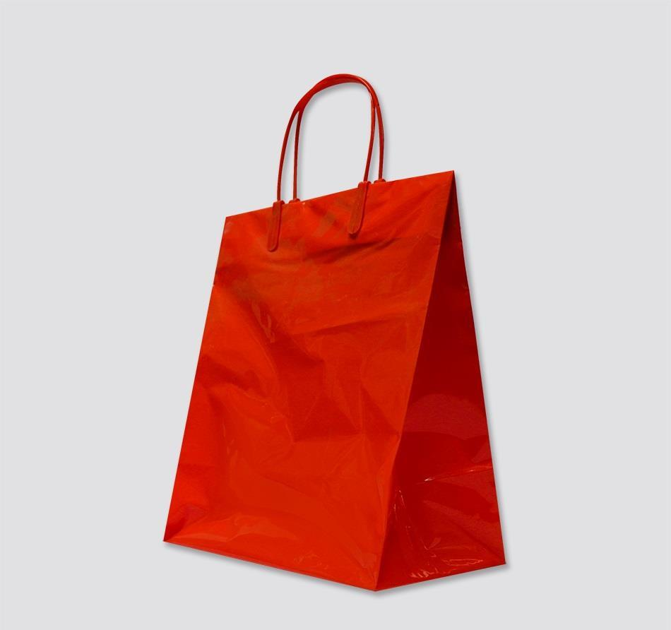 Plastic Shopping Bags with Handles | American Hanger & Fixture